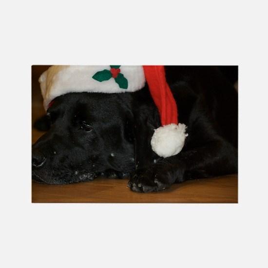 Funny Labrador christmas Rectangle Magnet