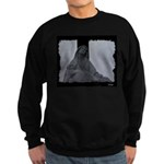 Mary and Jesus Sweatshirt (dark)