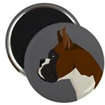 Boxer Profile Magnets