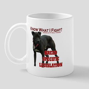 """I Fight BSL"" Mug"