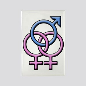 SWINGERS SYMBOL FMF Rectangle Magnet