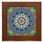 Blue Passion Flower I Framed Tile
