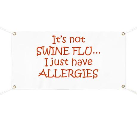 It's Not Swine Flu Banner