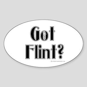 Got Flint? Oval Sticker