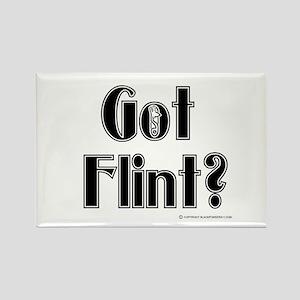 Got Flint? Rectangle Magnet