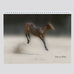colts and fillies horse monthly wall calendar