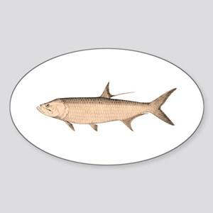 Vintage Tarpon Oval Sticker