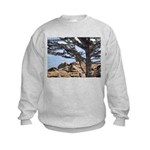 Sea Lions Kids Sweatshirt