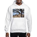 Sea Lions Hooded Sweatshirt