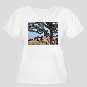 Sea Lions Women's Plus Size Scoop Neck T-Shirt