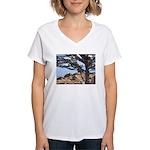 Sea Lions Women's V-Neck T-Shirt