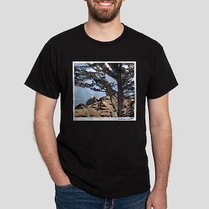 Sea Lions Dark T-Shirt