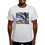 Sea Lions Light T-Shirt