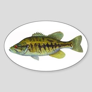 Smallmouth Bass Oval Sticker