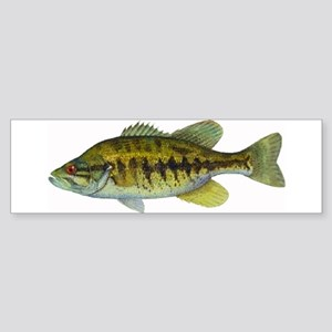Smallmouth Bass Bumper Sticker
