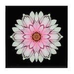Pink and White Dahlia I Tile Coaster