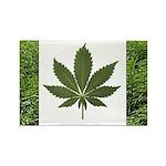 Legalize Marijuana Cannabis Flag Rectangle Magnet