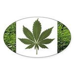 Legalize Marijuana Cannabis Flag Oval Sticker