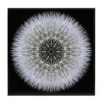Dandelion Head I Tile Coaster