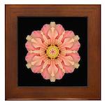 Hibiscus Rosa-sinensus I Framed Tile