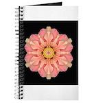 Hibiscus Rosa-sinensus I Journal