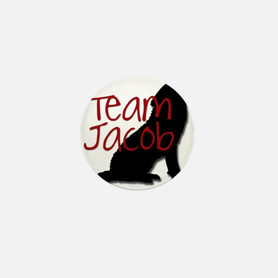 Team Jacob Mini Button