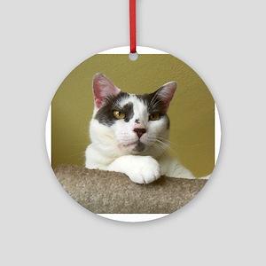 Grey & White Cat Ornament (Round)