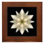 White Lily I Framed Tile