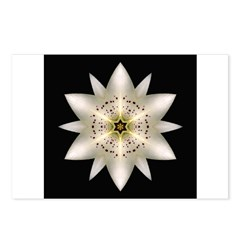 White Lily I Postcards (Package of 8)