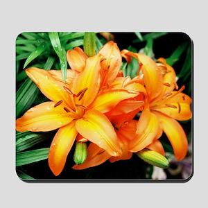Lily - Mousepad