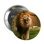 """King of the Jungle 2.25"""" Button"""