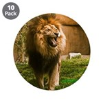 """King of the Jungle 3.5"""" Button (10 pack)"""