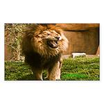 King of the Jungle Rectangle Sticker 10 pk)