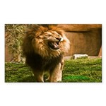 King of the Jungle Rectangle Sticker