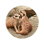 "Meerkats 3.5"" Button"