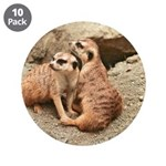 "Meerkats 3.5"" Button (10 pack)"