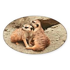Meerkats Oval Sticker (50 pk)