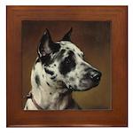 Vintage Great Dane Portrait Framed Tile