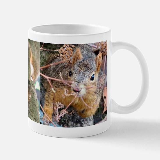 squirrel-cup-02 Mugs