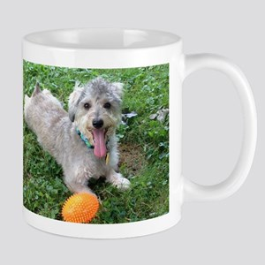 IMG_7491 Mugs