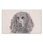Boykin Spaniel Sticker (Rectangle 10 pk)