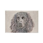 Boykin Spaniel Rectangle Magnet (100 pack)