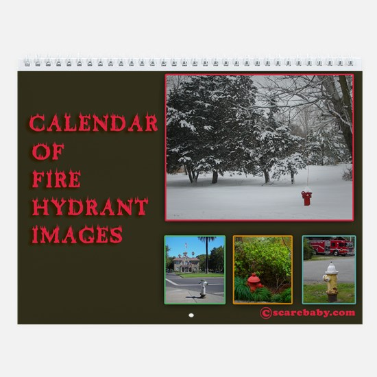 Fire Hydrants 12 Images Wall Calendar