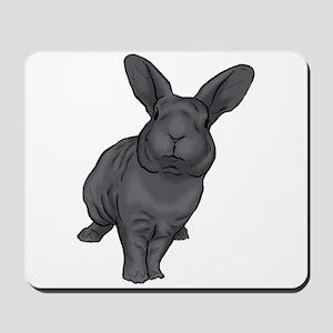 Blue Mini Rex Mousepad