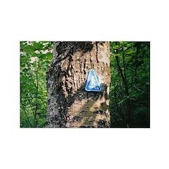 Trail Photo: Trail Marker Magnet