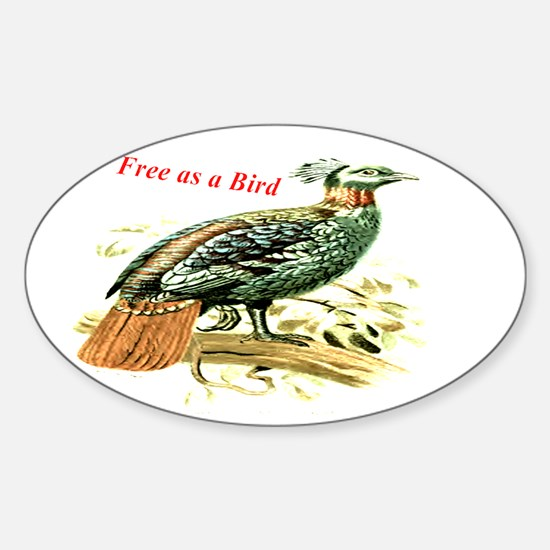 Drawing of a pheasant Decal
