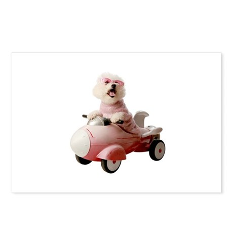 Fifi the Bichon Frise Postcards (Package of 8)