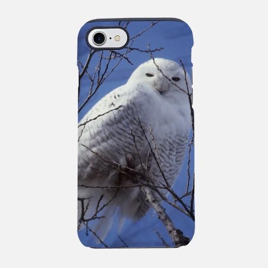 Snowy White Owl, Blue Sky iPhone 7 Tough Case