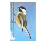 Chickadee on Feeder Postcards (Package of 8)