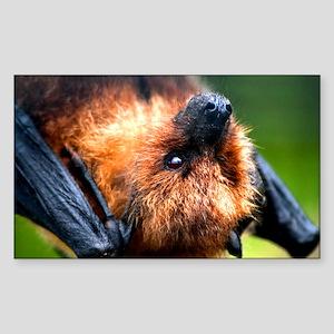 RODRIGUEZ FRUIT BAT Rectangle Sticker